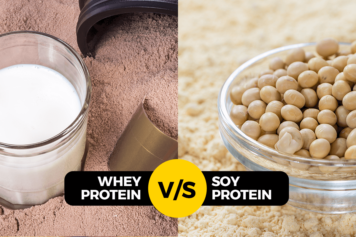 WHEY PROTEIN V/S SOY PROTEIN- UNDERSTANDING MADE SIMPLER!